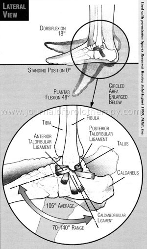 ankle_foot_treatment_fig_03[1]